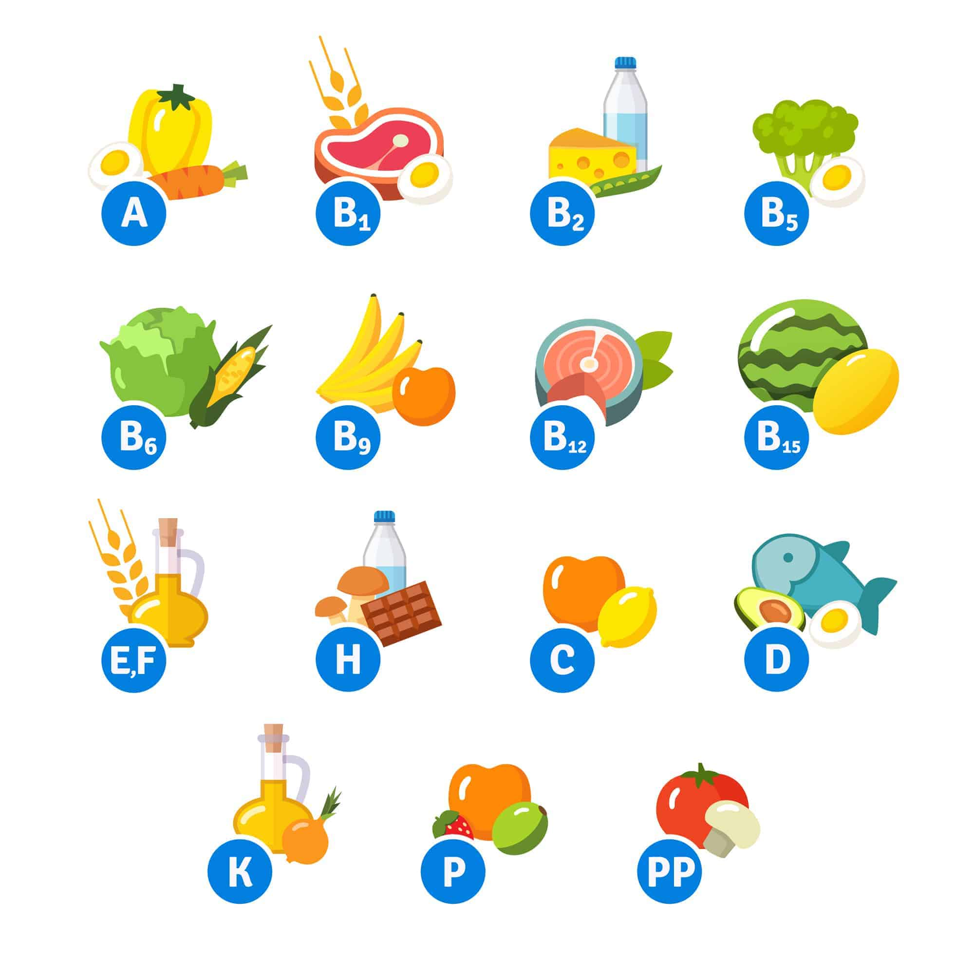 Types of food and associated vitamins in a vector file