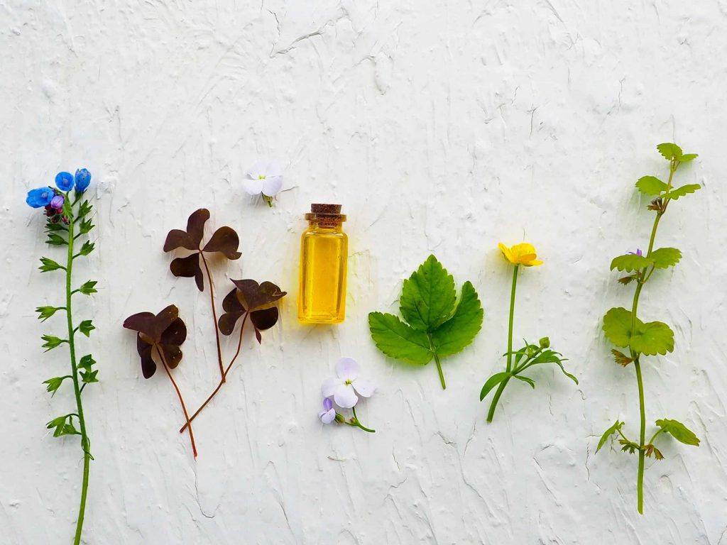 Plants and a bottle of oil
